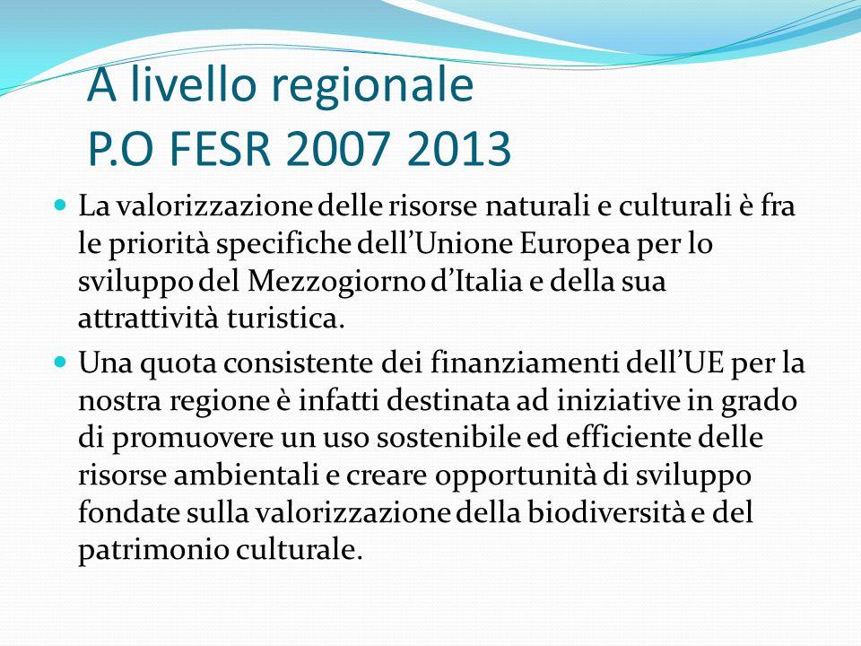 A livello regionale P.O FESR 2007 2013 La valorizzazione delle risorse naturali e culturali è fra le priorità specifiche dellUnione Europea per lo sviluppo del Mezzogiorno dItalia e della sua attrattività turistica.