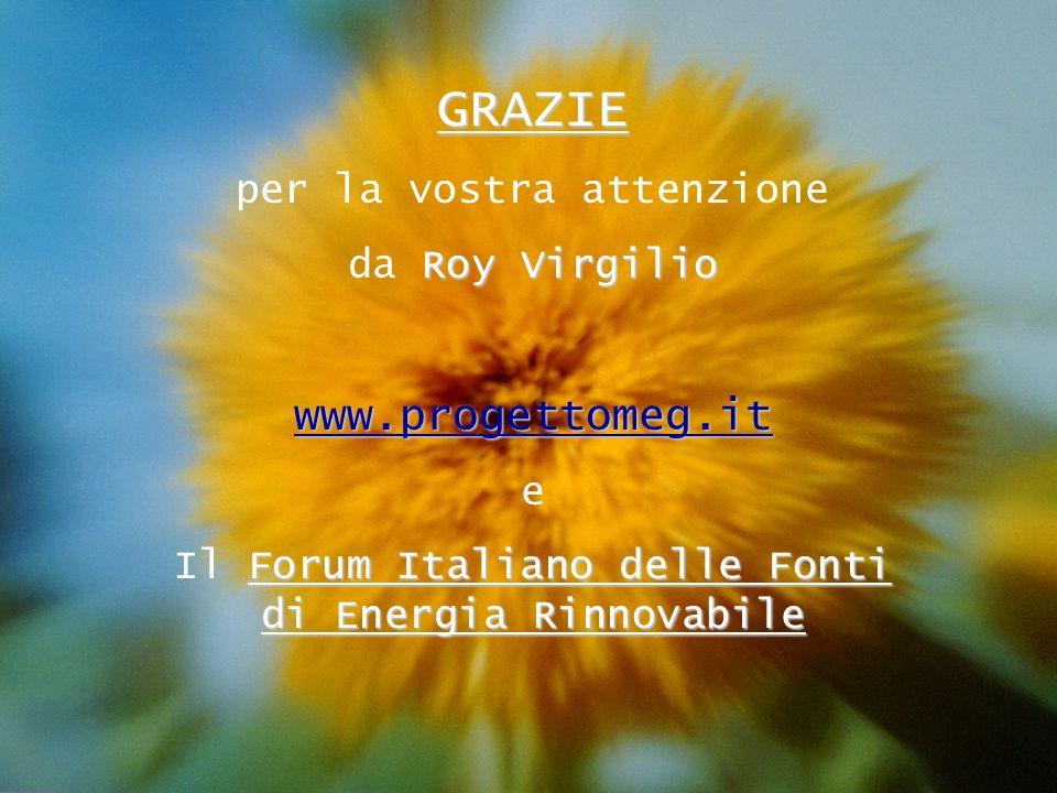 18 GRAZIE per la vostra attenzione Roy Virgilio da Roy Virgilio www.progettomeg.it e Forum Italiano delle Fonti di Energia Rinnovabile Il Forum Italia