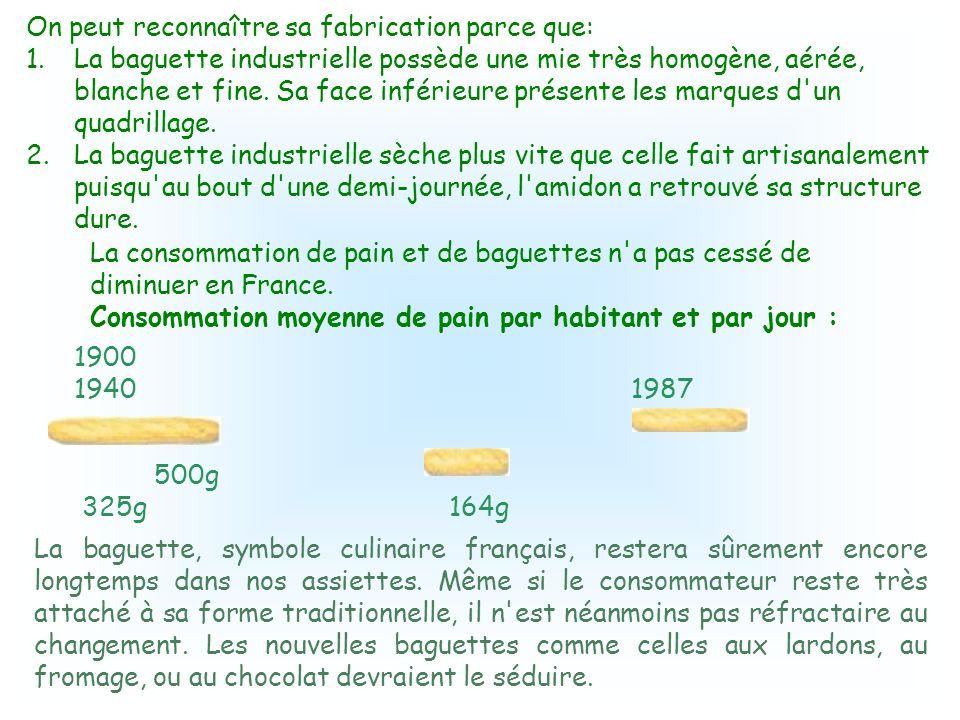 La baguette est fabriquée avec la farine de blé qui est constituée de 70 à 75 % d'amidon. Les granules d'amidon sont formés d'amylose et d'amylopectin