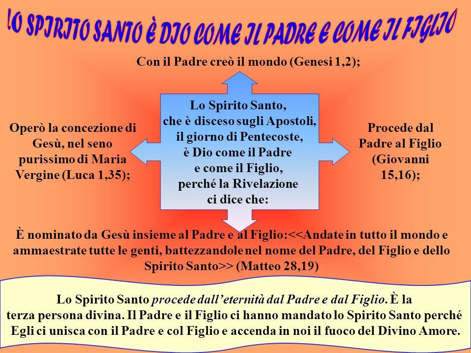LO SPIRITO SANTO NEL CREDO La comunità cristiana dice: >. Questo significa: lo Spirito Santo è Dio; una Persona della divina Trinità è datore di vita