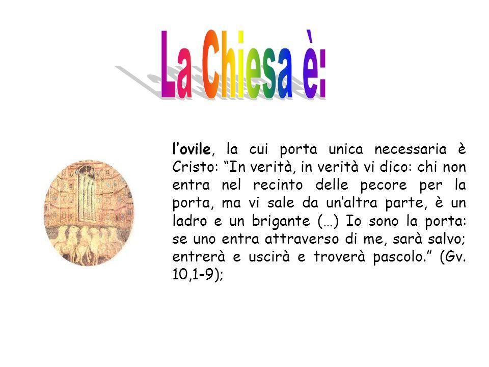 Si diviene membri di questo Popolo non per nascita fisica ma per la nascita dallalto, dallacqua e dallo Spirito(Gv 3,3- 5), cioè mediante la fede in C