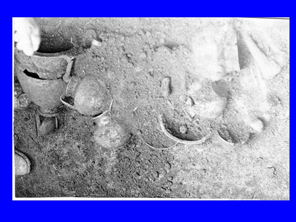 NECROPOLI DI RIPACANDIDA Non è stato individuato labitato relativo alla fase della necropoli.