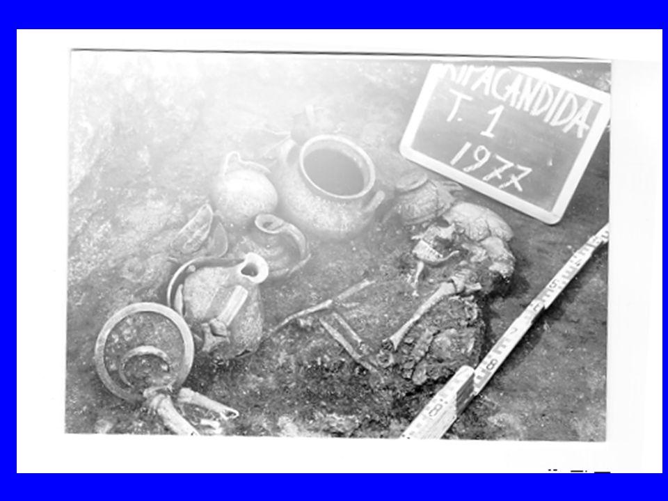 NECROPOLI DI RIPACANDIDA Gli individui nelle tombe sono deposti avvolti in stoffe trattenute da fibule Lo scheletro è sempre in posizione rannicchiata Le tombe non sono disposte secondo un orientamento particolare Sono presenti casi di sovrapposizione di tombe con tagli delle precedenti.