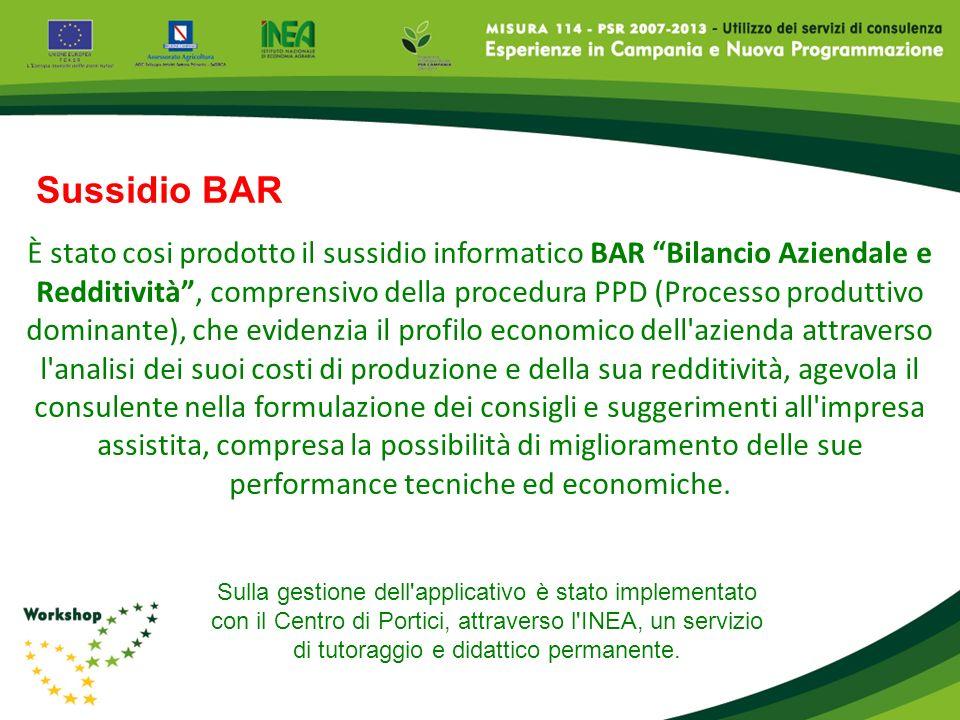 È stato cosi prodotto il sussidio informatico BAR Bilancio Aziendale e Redditività, comprensivo della procedura PPD (Processo produttivo dominante), c