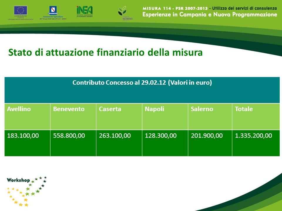 Stato di attuazione finanziario della misura AvellinoBeneventoCasertaNapoliSalernoTotale 183.100,00558.800,00263.100,00128.300,00201.900,001.335.200,0