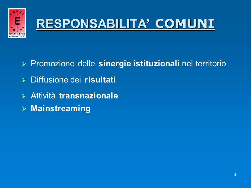 4 RESPONSABILITA COMUNI Promozione delle sinergie istituzionali nel territorio Diffusione dei risultati Attività transnazionale Mainstreaming