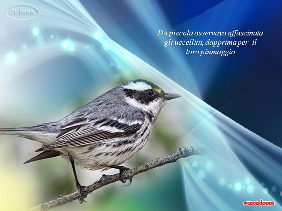 Da piccola osservavo affascinata gli uccellini, dapprima per il loro piumaggio