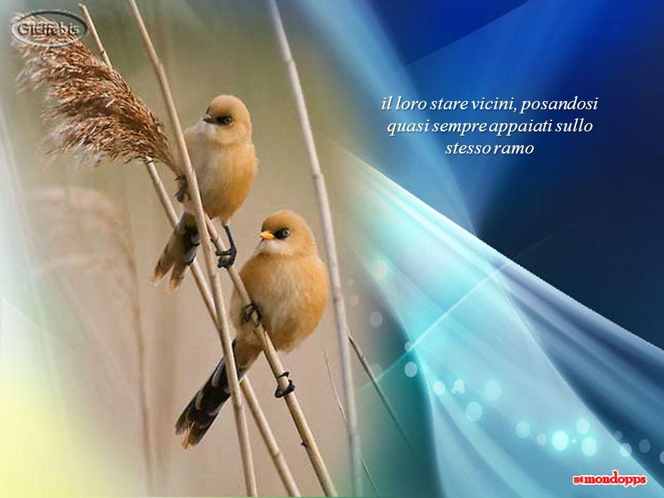 Limportante è che derivi da due scelte libere, dalla fiducia e dal rispetto
