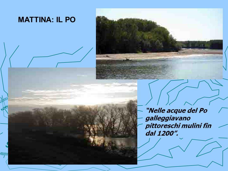 MATTINA: IL PO Nelle acque del Po galleggiavano pittoreschi mulini fin dal 1200.