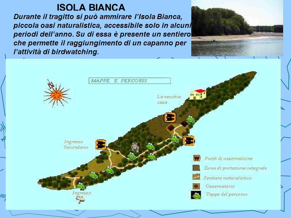 ISOLA BIANCA Durante il tragitto si può ammirare lIsola Bianca, piccola oasi naturalistica, accessibile solo in alcuni periodi dellanno. Su di essa è