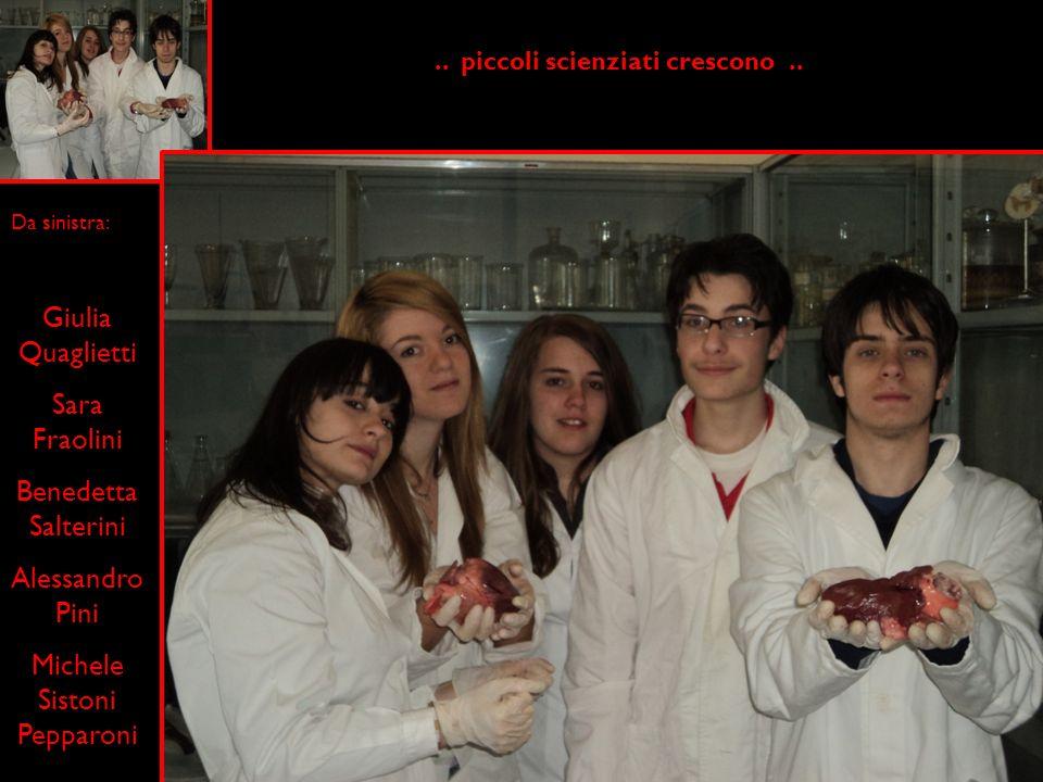 Da sinistra: Giulia Quaglietti Sara Fraolini Benedetta Salterini Alessandro Pini Michele Sistoni Pepparoni.. piccoli scienziati crescono..
