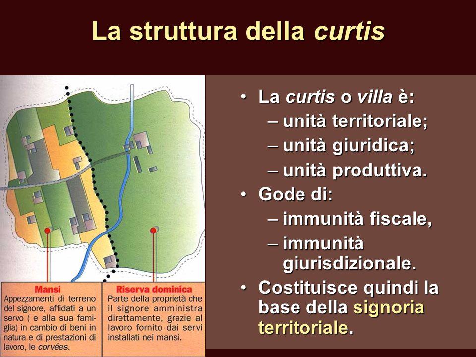 La struttura della curtis La curtis o villa è:La curtis o villa è: –unità territoriale; –unità giuridica; –unità produttiva. Gode di:Gode di: –immunit