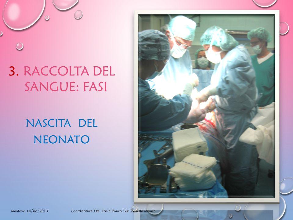 3.RACCOLTA DEL SANGUE: FASI NASCITA DEL NEONATO Mantova 14/06/2013 Coordinatrice Ost.