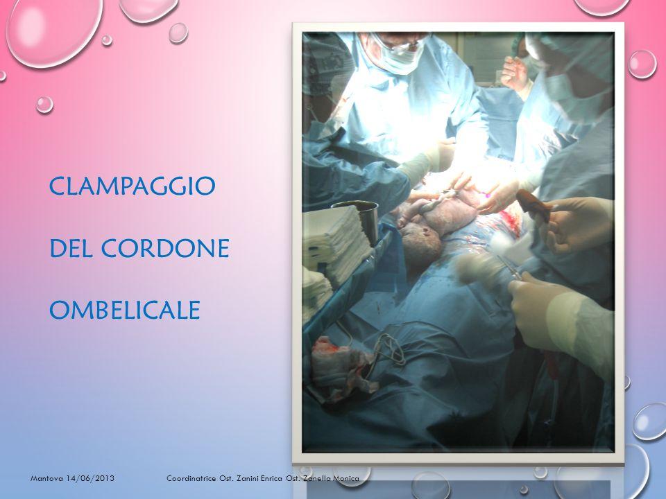 CLAMPAGGIO DEL CORDONE OMBELICALE Mantova 14/06/2013 Coordinatrice Ost.