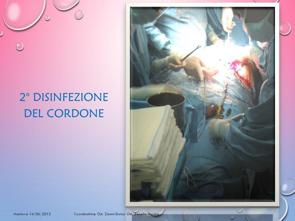 2° DISINFEZIONE DEL CORDONE Mantova 14/06/2013 Coordinatrice Ost. Zanini Enrica Ost. Zanella Monica