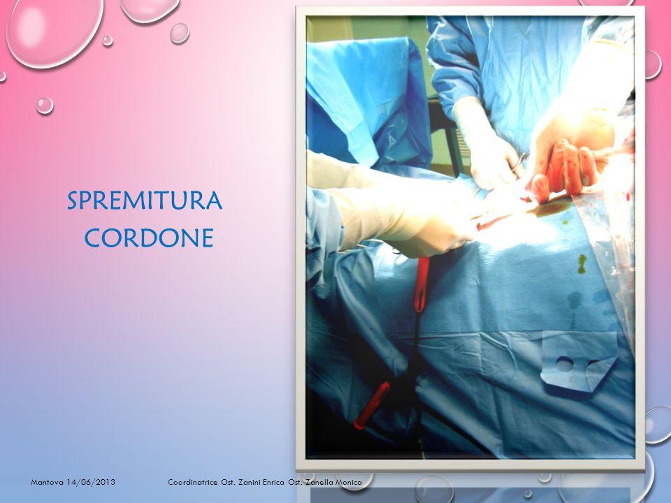 SPREMITURA CORDONE Mantova 14/06/2013 Coordinatrice Ost. Zanini Enrica Ost. Zanella Monica