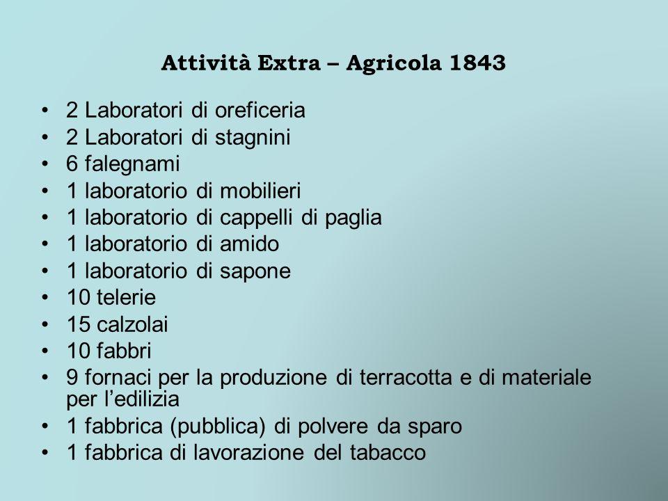 Attività Extra – Agricola 1843 2 Laboratori di oreficeria 2 Laboratori di stagnini 6 falegnami 1 laboratorio di mobilieri 1 laboratorio di cappelli di