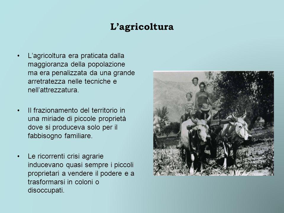 Lagricoltura Lagricoltura era praticata dalla maggioranza della popolazione ma era penalizzata da una grande arretratezza nelle tecniche e nellattrezzatura.