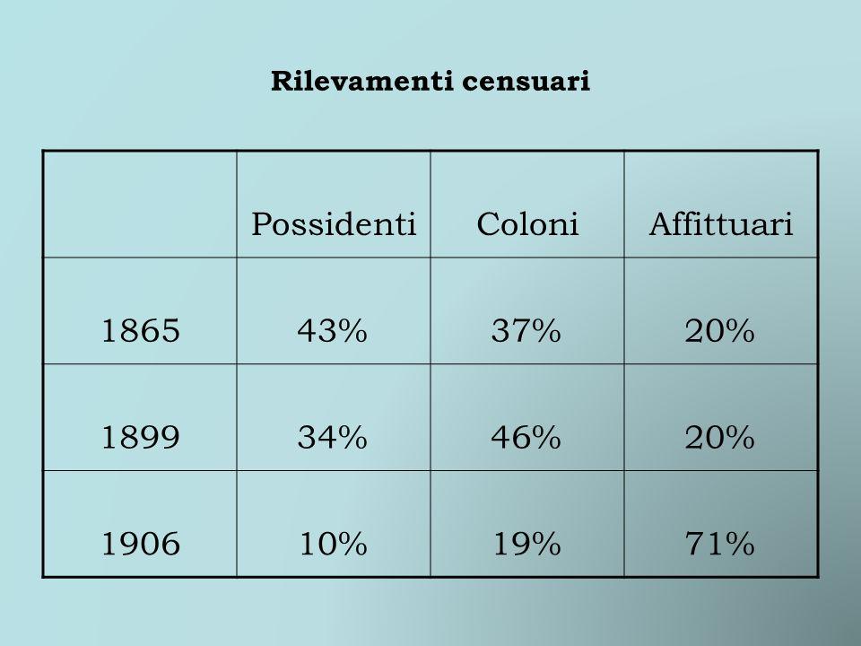 Rilevamenti censuari PossidentiColoniAffittuari 186543%37%20% 189934%46%20% 190610%19%71%