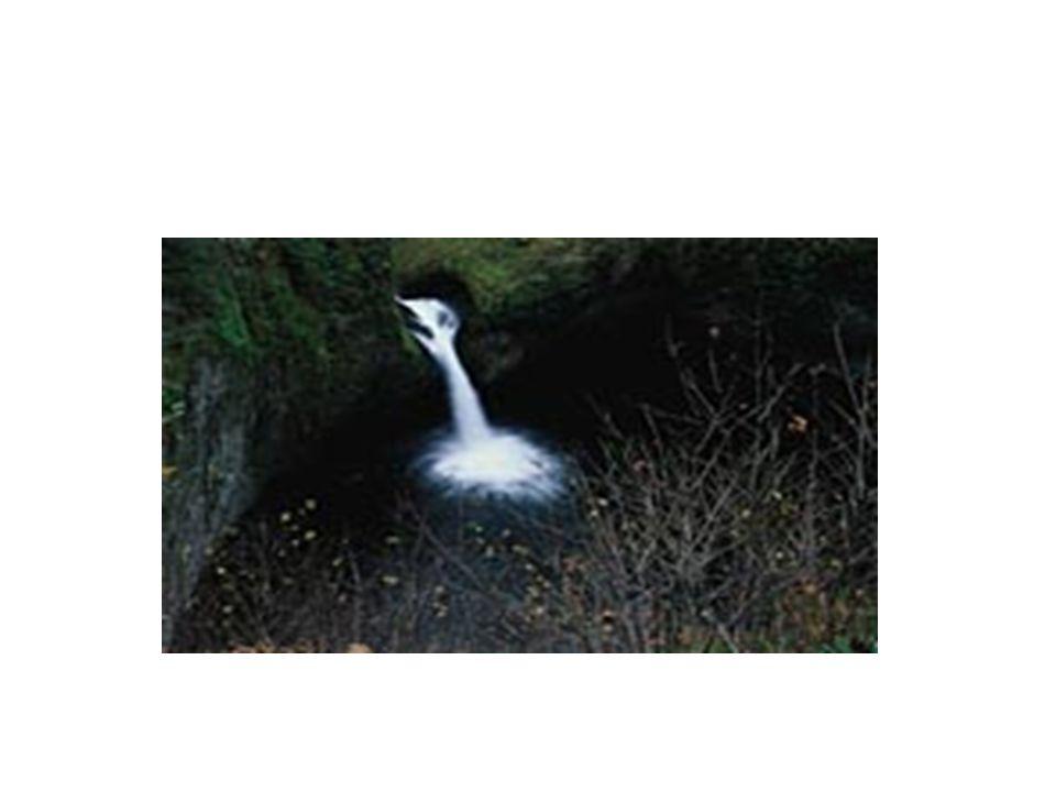 I prelievi dacqua effettuati dall uomo stanno avendo come conseguenza cambiamenti ambientali.