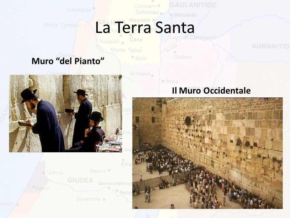 La Terra Santa Il Muro Occidentale Muro del Pianto