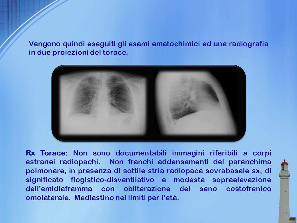 Vengono quindi eseguiti gli esami ematochimici ed una radiografia in due proiezioni del torace. Rx Torace: Non sono documentabili immagini riferibili