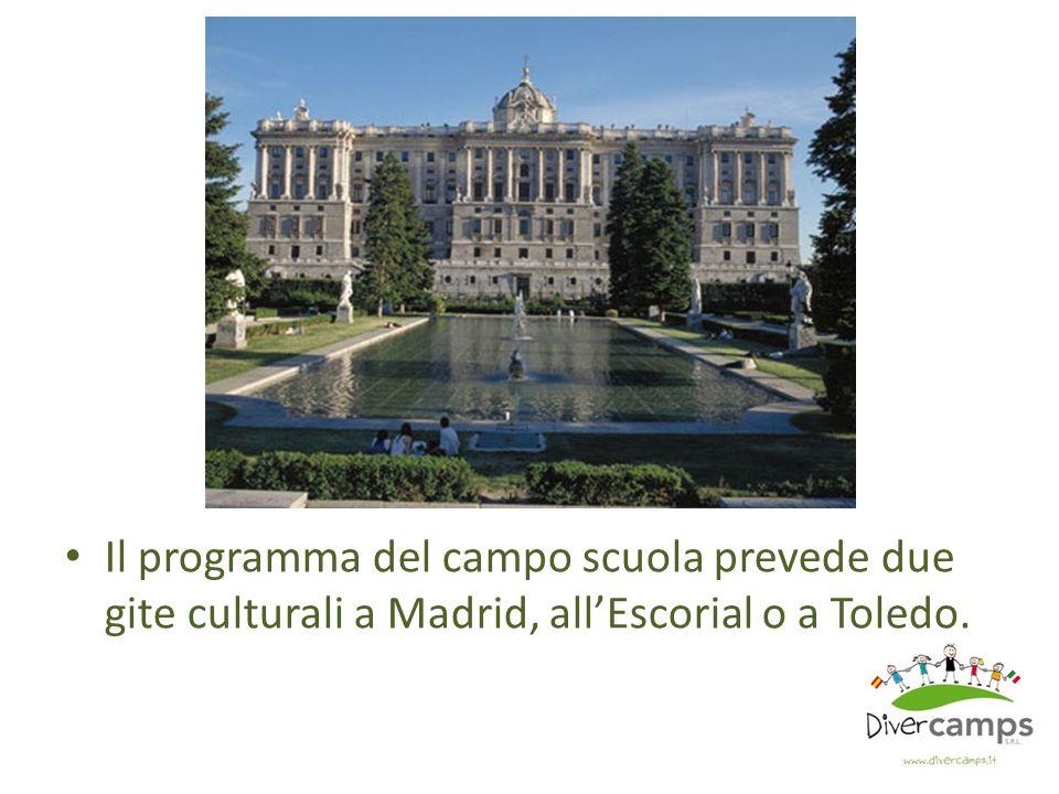 Il programma del campo scuola prevede due gite culturali a Madrid, allEscorial o a Toledo.