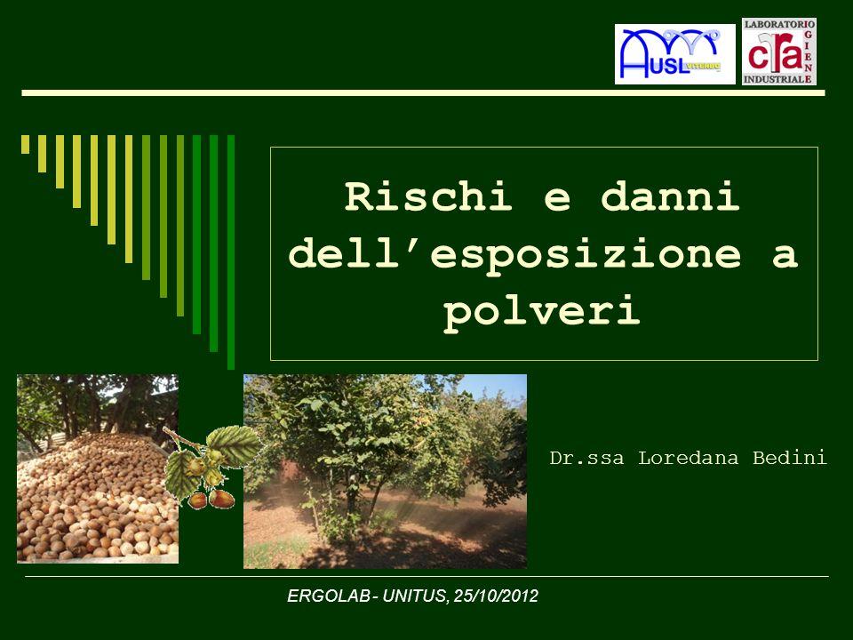 Rischi e danni dellesposizione a polveri Dr.ssa Loredana Bedini ERGOLAB - UNITUS, 25/10/2012