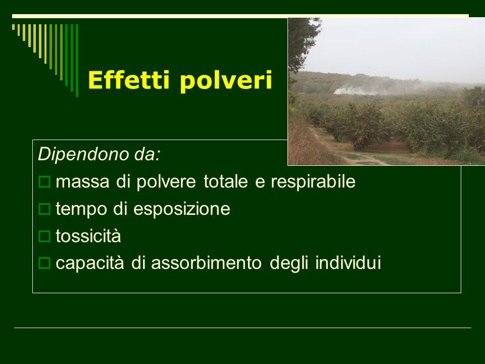 Effetti polveri Dipendono da: massa di polvere totale e respirabile tempo di esposizione tossicità capacità di assorbimento degli individui