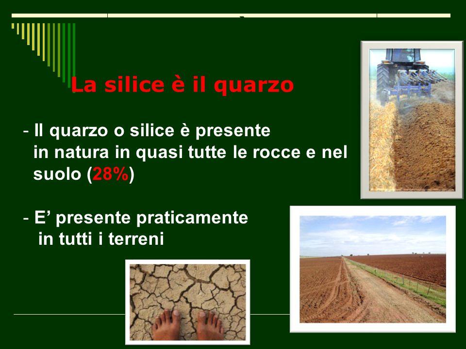Che cosa è la silice? La silice è il quarzo - Il quarzo o silice è presente in natura in quasi tutte le rocce e nel suolo (28%) - E presente praticame