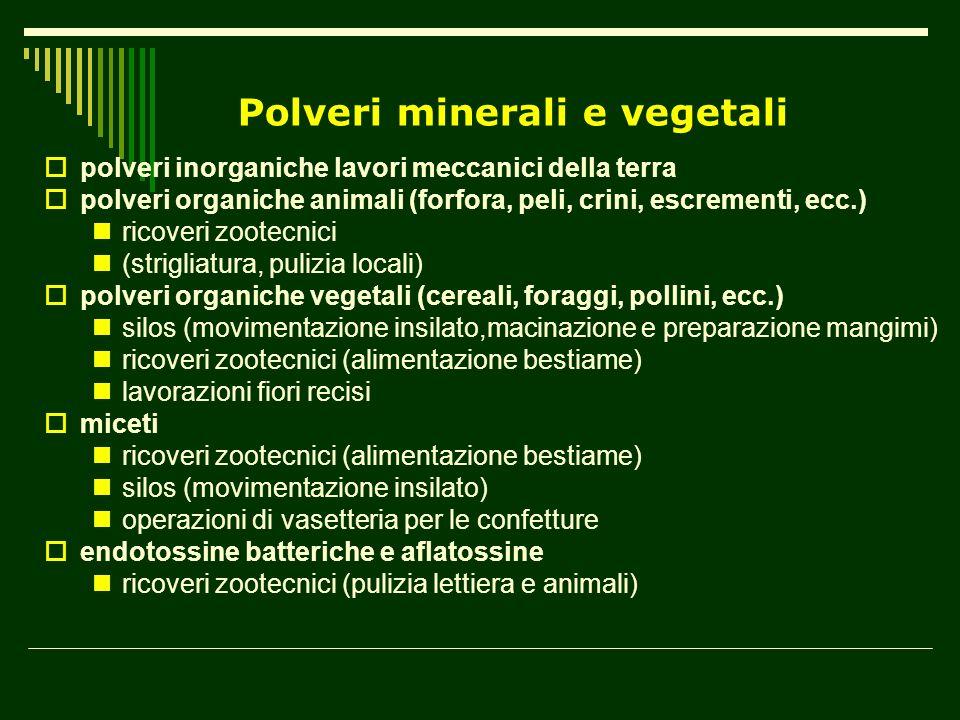 Polveri minerali e vegetali polveri inorganiche lavori meccanici della terra polveri organiche animali (forfora, peli, crini, escrementi, ecc.) ricove