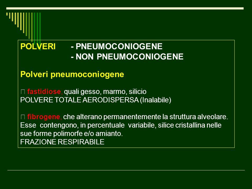 "POLVERI - PNEUMOCONIOGENE - NON PNEUMOCONIOGENE Polveri pneumoconiogene "" fastidiose, quali gesso, marmo, silicio POLVERE TOTALE AERODISPERSA (Inalabi"
