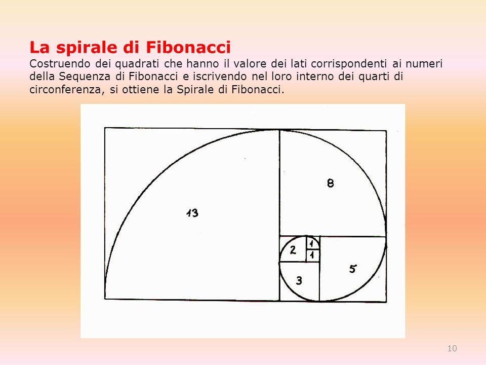 La spirale di Fibonacci Costruendo dei quadrati che hanno il valore dei lati corrispondenti ai numeri della Sequenza di Fibonacci e iscrivendo nel loro interno dei quarti di circonferenza, si ottiene la Spirale di Fibonacci.