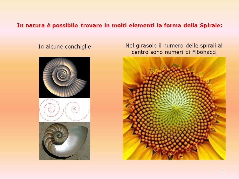 In natura è possibile trovare in molti elementi la forma della Spirale: In alcune conchiglie Nel girasole il numero delle spirali al centro sono numeri di Fibonacci 11