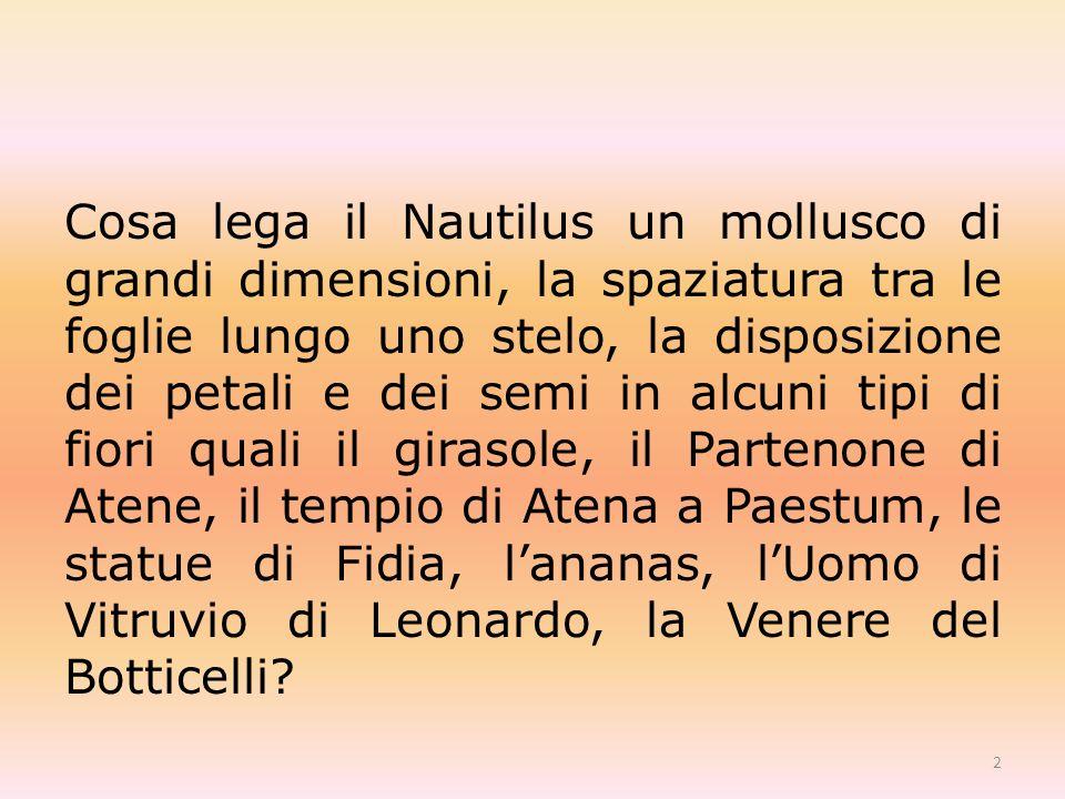 Cosa lega il Nautilus un mollusco di grandi dimensioni, la spaziatura tra le foglie lungo uno stelo, la disposizione dei petali e dei semi in alcuni tipi di fiori quali il girasole, il Partenone di Atene, il tempio di Atena a Paestum, le statue di Fidia, lananas, lUomo di Vitruvio di Leonardo, la Venere del Botticelli.