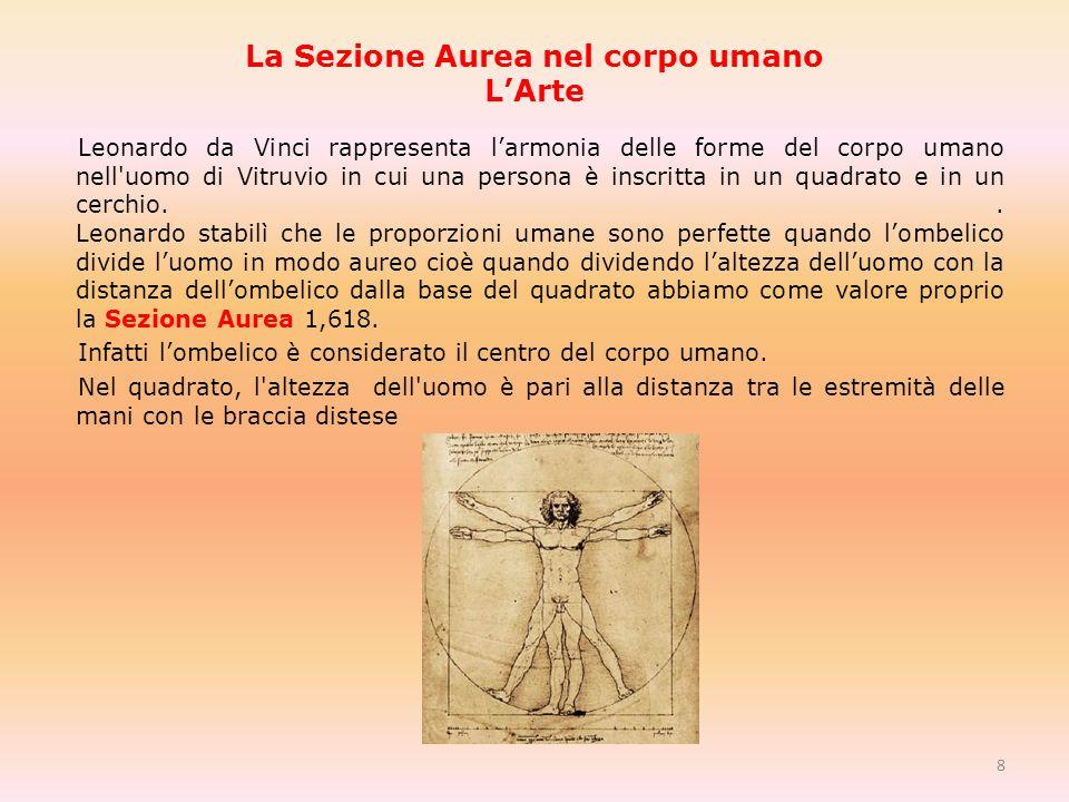 La Sezione Aurea nel corpo umano LArte Leonardo da Vinci rappresenta larmonia delle forme del corpo umano nell uomo di Vitruvio in cui una persona è inscritta in un quadrato e in un cerchio..