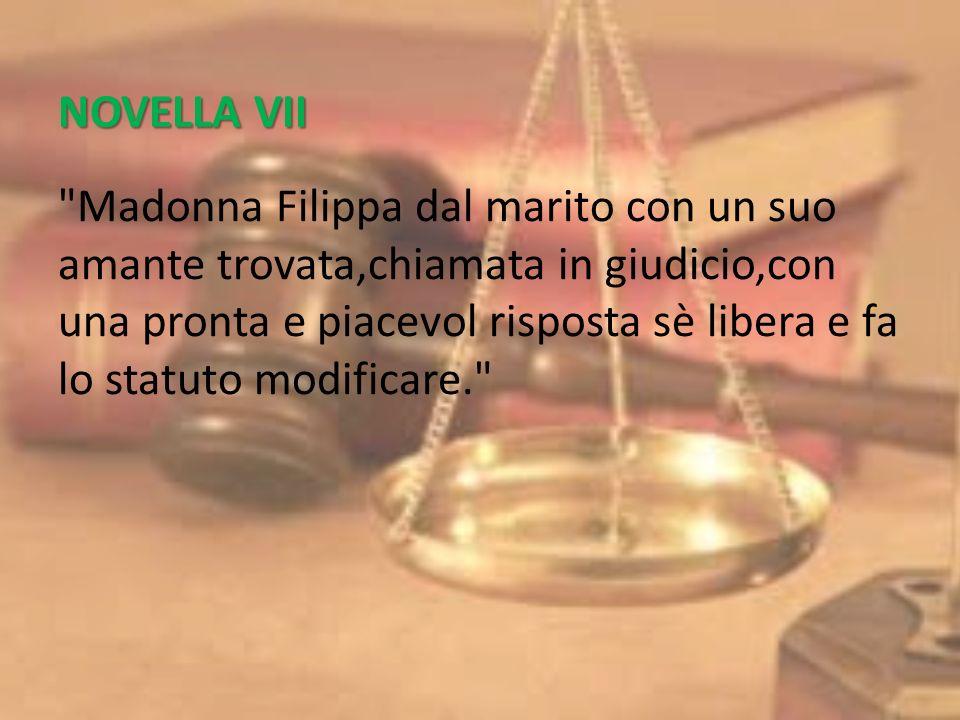 NOVELLA VII