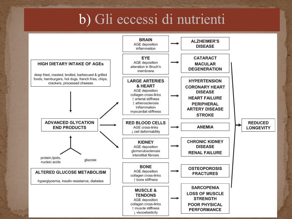 b) Gli eccessi di nutrienti