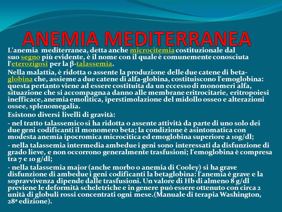 L'anemia mediterranea, detta anche microcitemia costituzionale dal suo segno più evidente, è il nome con il quale è comunemente conosciuta l'eterozigo