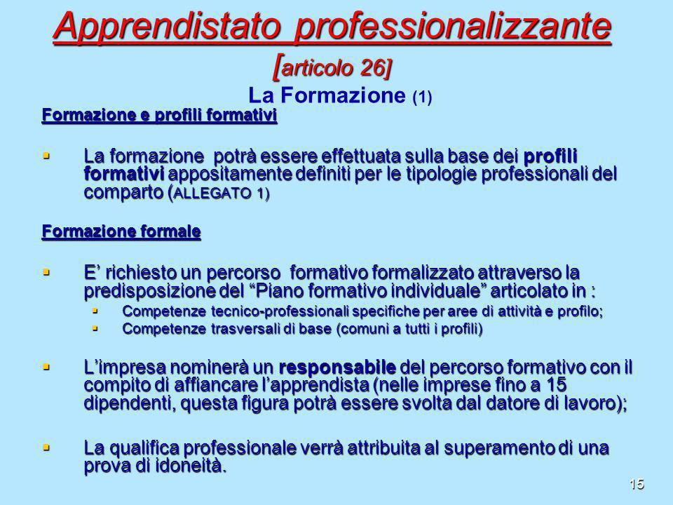15 Formazione e profili formativi La formazione potrà essere effettuata sulla base dei profili formativi appositamente definiti per le tipologie profe