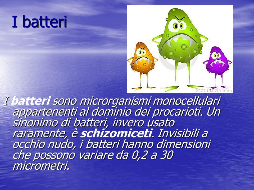 I batteri I sono microrganismi monocellulari appartenenti al dominio dei procarioti.