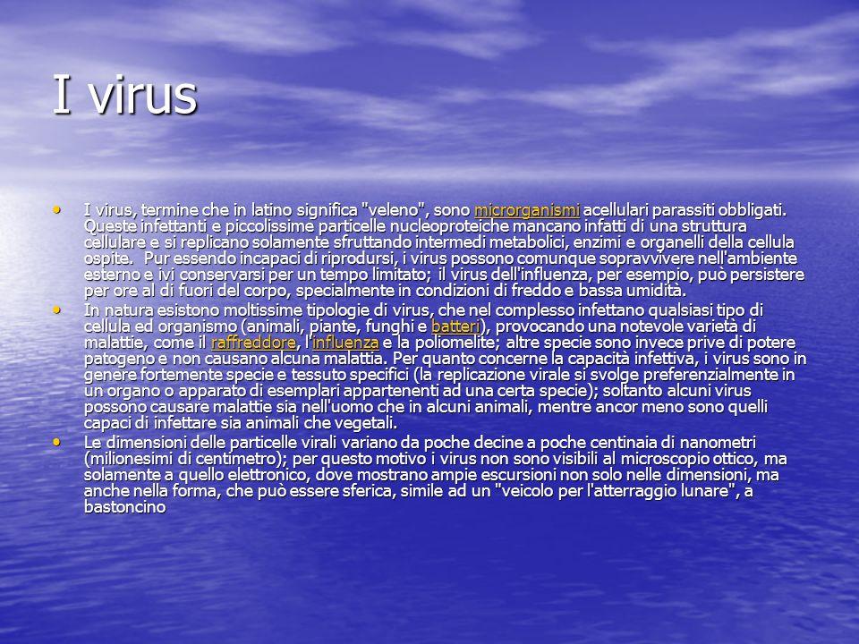 I virus I virus, termine che in latino significa veleno , sono microrganismi acellulari parassiti obbligati.