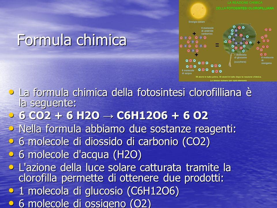 Formula chimica La formula chimica della fotosintesi clorofilliana è la seguente: La formula chimica della fotosintesi clorofilliana è la seguente: 6 CO2 + 6 H2O C6H12O6 + 6 O2 6 CO2 + 6 H2O C6H12O6 + 6 O2 Nella formula abbiamo due sostanze reagenti: Nella formula abbiamo due sostanze reagenti: 6 molecole di diossido di carbonio (CO2) 6 molecole di diossido di carbonio (CO2) 6 molecole d acqua (H2O) 6 molecole d acqua (H2O) L azione della luce solare catturata tramite la clorofilla permette di ottenere due prodotti: L azione della luce solare catturata tramite la clorofilla permette di ottenere due prodotti: 1 molecola di glucosio (C6H12O6) 1 molecola di glucosio (C6H12O6) 6 molecole di ossigeno (O2) 6 molecole di ossigeno (O2)