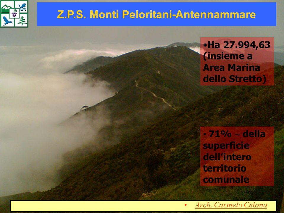 Ha 27.994,63 (insieme a Area Marina dello Stretto) Z.P.S. Monti Peloritani-Antennammare 71% ~ della superficie dellintero territorio comunale Arch. Ca