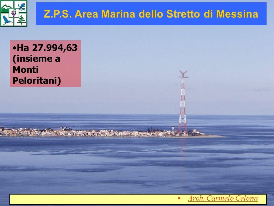 Ha 27.994,63 (insieme a Monti Peloritani) Z.P.S. Area Marina dello Stretto di Messina Arch. Carmelo Celona