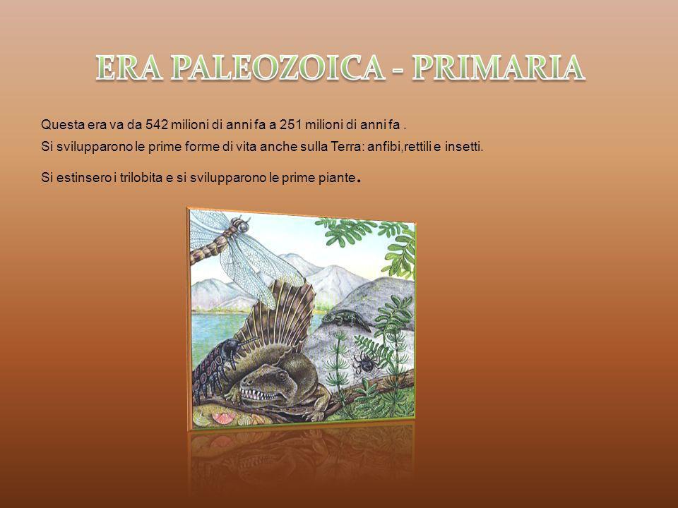 Gli scienziati suddividono l era Mesozoica in 3 periodi: Triassico,Giurassico e Cretaceo.