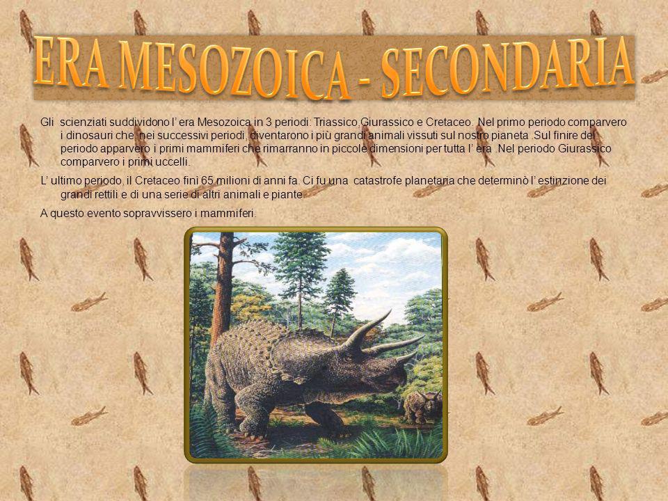 Gli scienziati suddividono l era Mesozoica in 3 periodi: Triassico,Giurassico e Cretaceo. Nel primo periodo comparvero i dinosauri che, nei successivi