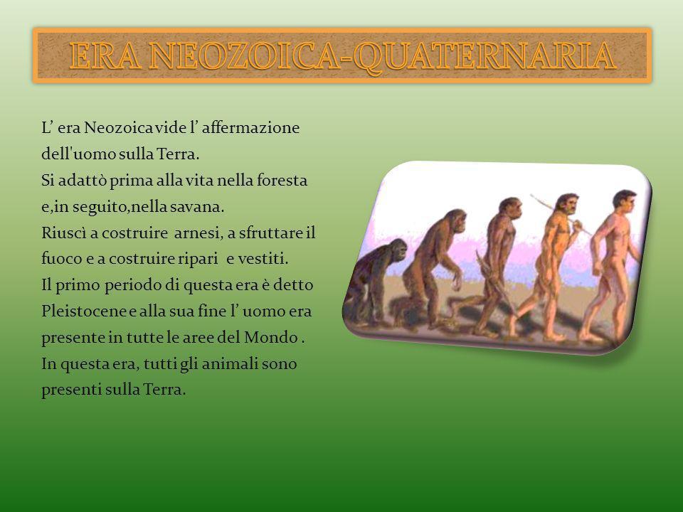 L era Neozoica vide l affermazione dell'uomo sulla Terra. Si adattò prima alla vita nella foresta e,in seguito,nella savana. Riuscì a costruire arnesi