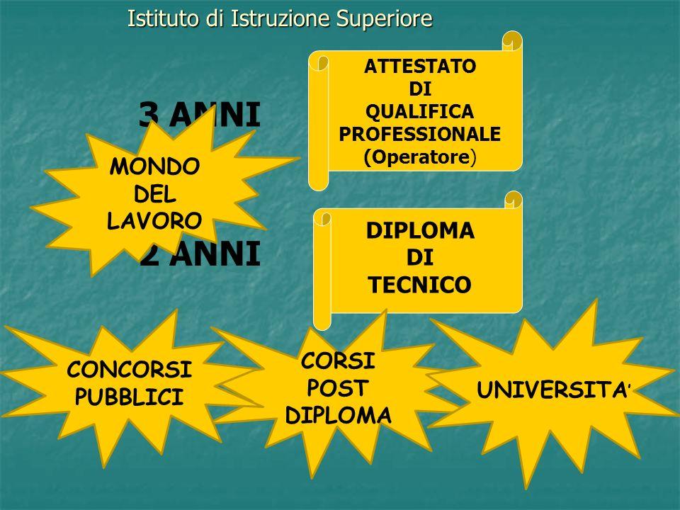 Istituto di Istruzione Superiore + 3 ANNI 2 ANNI ATTESTATO DI QUALIFICA PROFESSIONALE (Operatore) DIPLOMA DI TECNICO MONDO DEL LAVORO CORSI POST DIPLOMA UNIVERSITA CONCORSI PUBBLICI