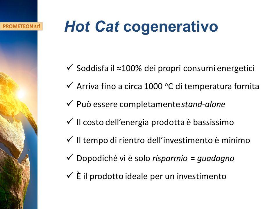 Hydro Fusion Confidential Information Hot Cat cogenerativo Soddisfa il 100% dei propri consumi energetici Arriva fino a circa 1000 o C di temperatura fornita Può essere completamente stand-alone Il costo dellenergia prodotta è bassissimo Il tempo di rientro dellinvestimento è minimo Dopodiché vi è solo risparmio = guadagno È il prodotto ideale per un investimento